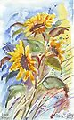 Stray Sunflowers by Maree  Clarkson