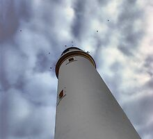 St Mary's Lighthouse by skddigital