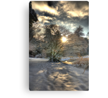 A county Down Winter Scene Metal Print
