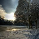 Mount Stewart In The Snow 2 by Jonny Andrews