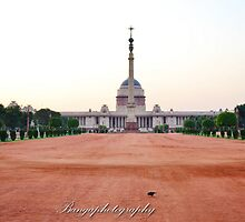 Rashtrapati Bhawan or the Presidential Palace by naveenbanga