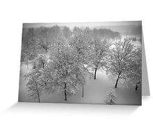 Looking down on snowy trees Greeting Card