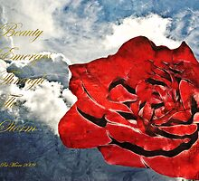 Beauty Emerges by Pat Moore