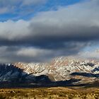 Organ Mountains by lfsaenz