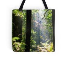 Dramatic Forest Tote Bag