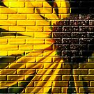 Graffiti On The Bricks by Diane Schuster