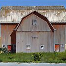 Michigan Barn #2 by Michael Ward