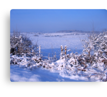 We're getting a White Christmas for sure Canvas Print