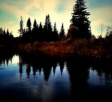 Moose River Adirondacks by kfunabashi