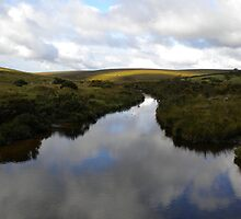 Reflection of Clouds in River Dart by evissaboutique