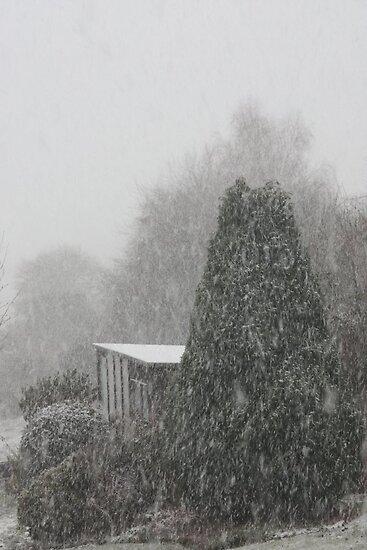 The Blizzard Begins by missmoneypenny
