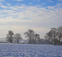 Winter at Barham by Dave Godden