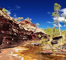 Kalamina Gorge by Dennis Wetherley