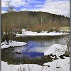 Winter by dazaria