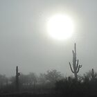 Fog in the Desert by Kimberly P-Chadwick