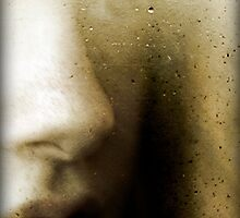 Looking through the Facets by Nicola Smith