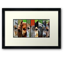 All Eyes Framed Print