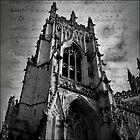 Minster - York by synergymono
