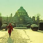 winter red hood and Palmhaus by picontagious