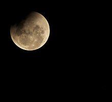 How Shines the Moon  by Barbara Burkhardt