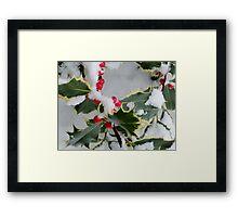 Christmas berries Framed Print