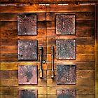 Copper Plate Door  by Ron Fitzgerald