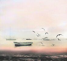 Bosporus  by ayberk sevimli