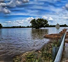 Farm flood, Murrumbidgee by bazcelt