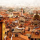 old Nice roofs by olga  hutsul