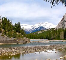 Bow River, Banff , Alberta Canada by Ali Brown