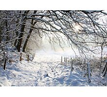 Winter path.... Photographic Print