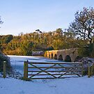 Eight Arch Bridge by Mark Robson