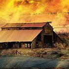 On The Farm by CarolM