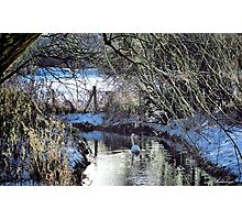 The Sound Of Silence Photographic Print
