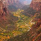 Zion Canyon Valley by Nickolay Stanev