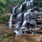 Blue Mountain Waterfalls by Terry Everson
