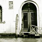 Venice  by dydydada