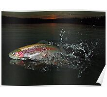 Peppermint Trout Poster