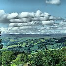God&#x27;s Own County - Nidderdale, Yorkshire  by Sandra Cockayne