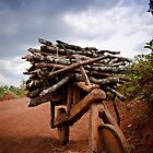 African wooden bike by Wim De Wulf