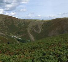 The Long Mynd 4a by Paul  Green