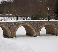 Bridge over frozen water by imagic