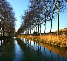 Canal du Midi in winter Capestang France by Paul Pasco