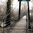 swinging bridge by tego53