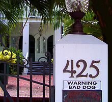 425 Bad Dog by Ginny Schmidt