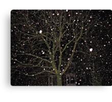 Falling Snow - Night Scene Canvas Print