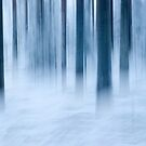 Frost and fog by finnarct