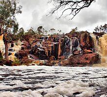 Nigretta Falls by Clive