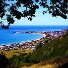 View of Apollo Bay by Alicia  Liliana