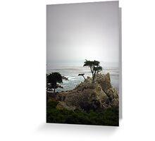 Lone Cypress Greeting Card